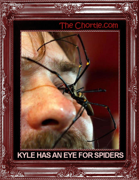 Kyle has an eye for spiders.