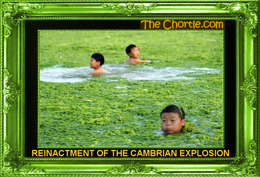 TheChortle.com on the Cambrian Explosion | Uncommon Descent