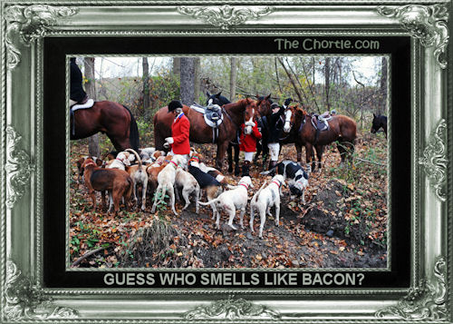 Guess who smells like bacon?