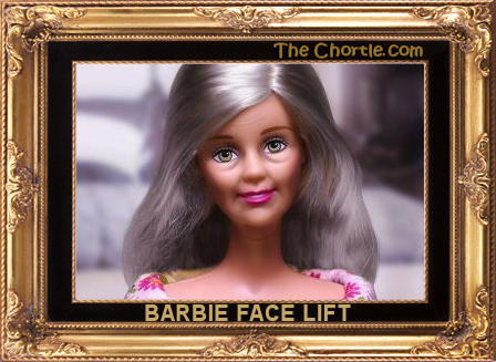 Barbie face lift