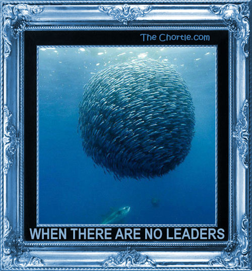 When there are no leaders