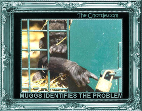 Muggs identifies the problem