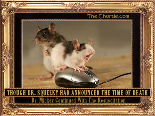 Though Dr. Squeeky had announced the time of death, Dr. Mickey continued with the resuscitation