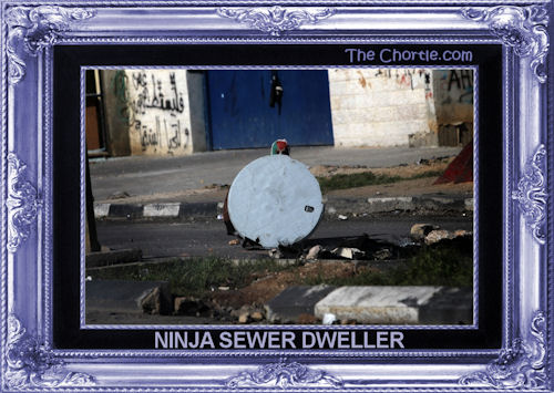 Ninja sewer dweller