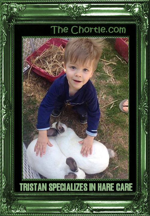 Tristan specializes in hare care