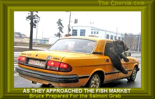 As they approached the fish market, Bruce prepared for the Salmon grab