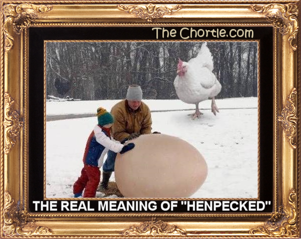 "The real meaning of ""henpecked"""