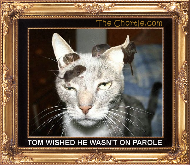 Tom wished he wasn't on parole.