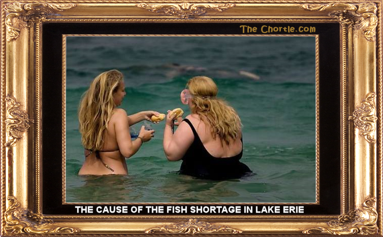 The cause of the fish shortage in Lake Erie.