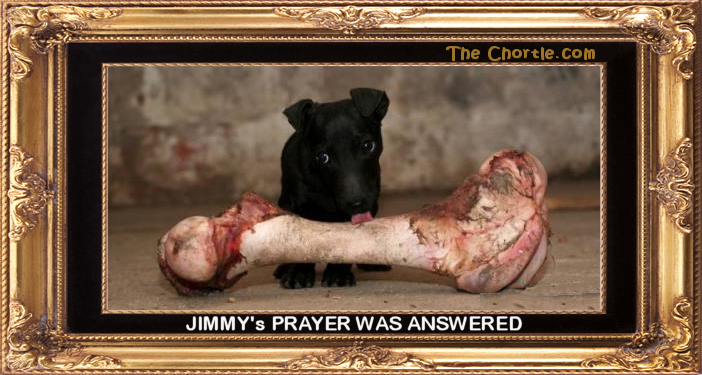 Jimmy's prayer was answered.