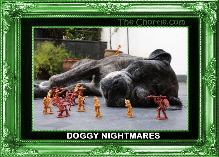 Doggy nightmares.