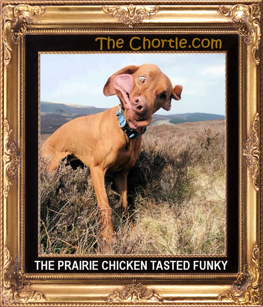 The prairie chicken tasted funky.