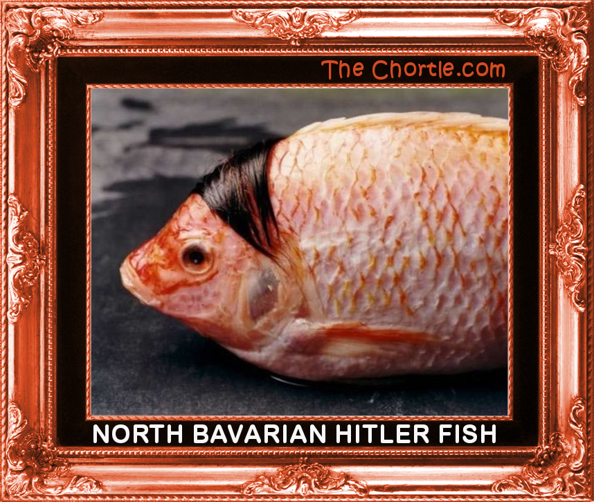 North Bavarian Hitler fish.