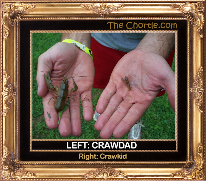 Left: Crawdad.  Right: Crawkid.
