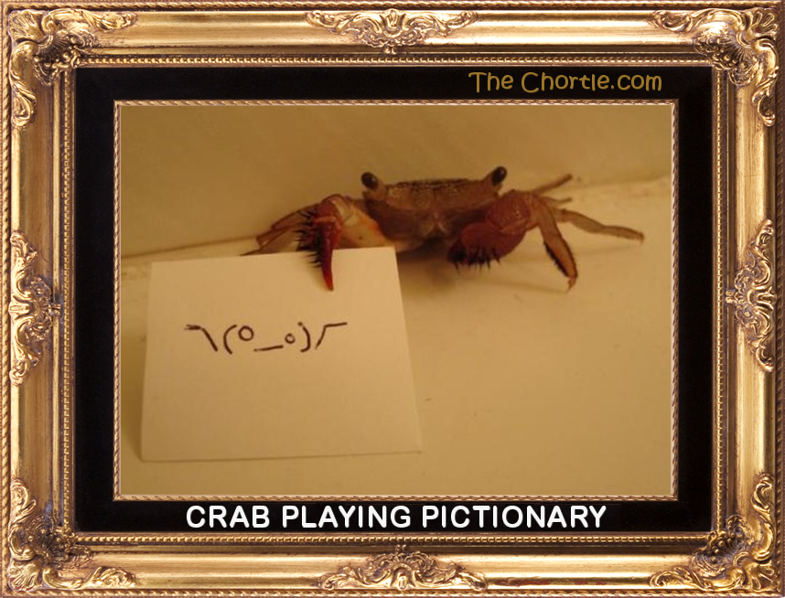 Crab playing Pictionary