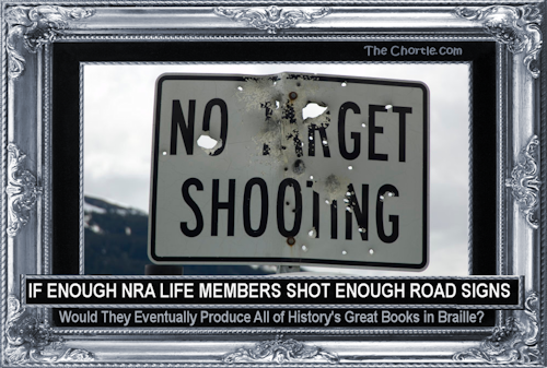 If enough NRA life members shot enough road signs, would they eventually produce all of history's great books in Braille?